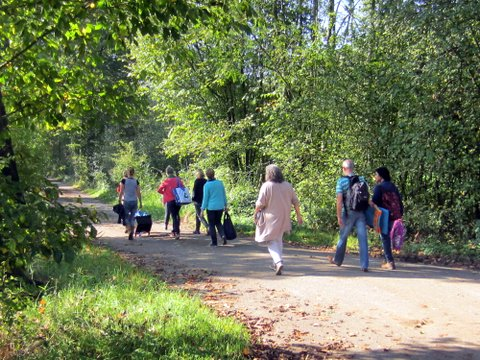 wandelingen met mindful movement
