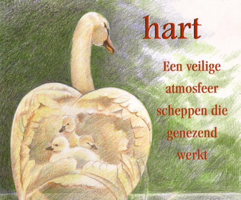 De helende kracht van het hart. Echte aandacht en compassie voor jezelf en de ander
